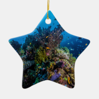 Tropical Fish Great Barrier Reef Coral Sea Ceramic Star Decoration