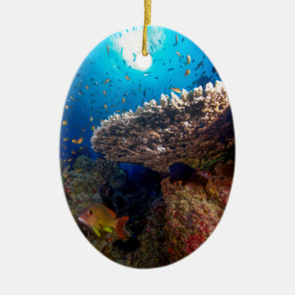 Tropical Fish Great Barrier Reef Coral Sea Gift Ceramic Oval Decoration