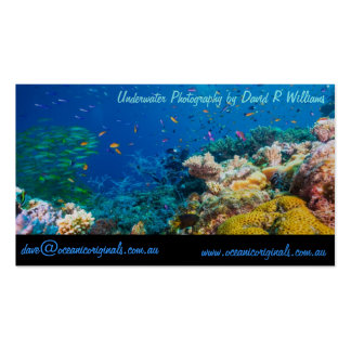 Tropical Fish Great Barrier Reef Coral Sea Pack Of Standard Business Cards