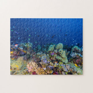 Tropical Fish Great Barrier Reef Coral Sea Puzzles