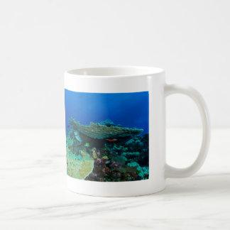 Tropical Fish of the Coral Sea Coffee Mug