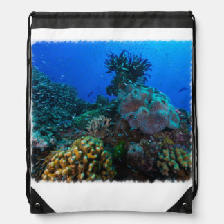 Tropical Fish on the Great Barrier Reef Backpacks