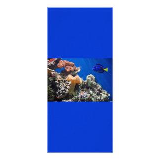 TROPICAL FISH SEALIFE CORAL DIGITAL REALISM OCEAN RACK CARD TEMPLATE