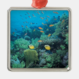 Tropical fish swimming over reef christmas ornament
