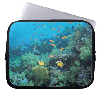 Tropical fish swimming over reef laptop sleeve