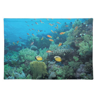 Tropical fish swimming over reef placemat