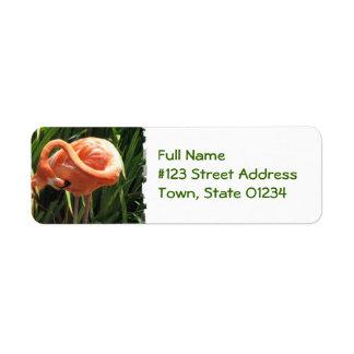 Tropical Flamingo Return Address Label