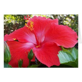 Tropical floral card