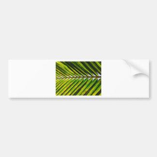 Tropical Florida Palm Bumper Sticker