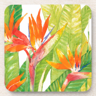Tropical Flowers | Bird of Paradise Coaster
