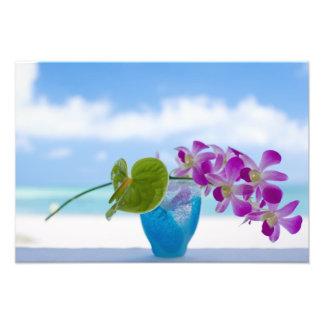Tropical flowers photograph