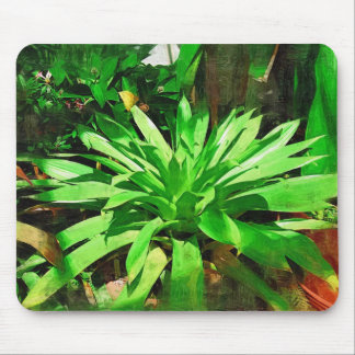 tropical foliage collection , fairchild tropical g mouse mat