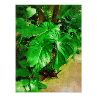 tropical foliage, fairchild tropical gardens, miam poster