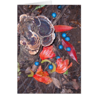 Tropical Forest Floor Card