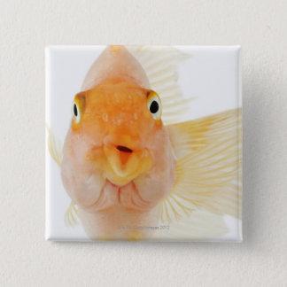 Tropical freshwater fish 15 cm square badge