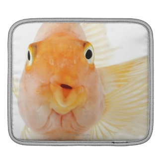 Tropical freshwater fish iPad sleeve
