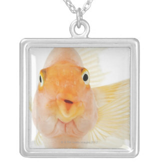 Tropical freshwater fish silver plated necklace