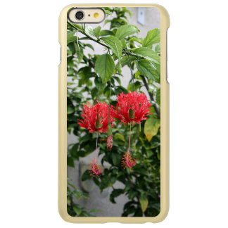 Tropical Fringed Coral Hibiscus Flower iPhone 6 Plus Case