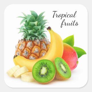 Tropical fruits square sticker