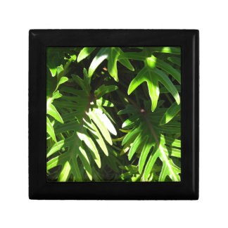 Tropical green small square gift box