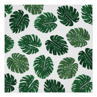 Tropical Hand Painted Swiss Cheese Plant Leaves Poster