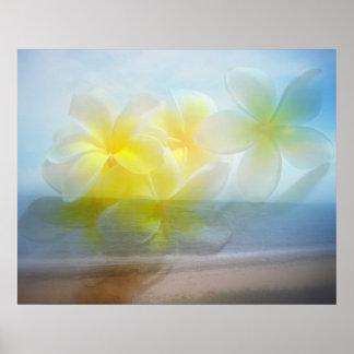 Tropical Haven Beach / Frangipani Poster