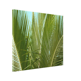 Tropical Hawaii Palm Tree Canvas Print