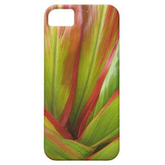 Tropical Hawaii Ti Leaf iPhone Cover
