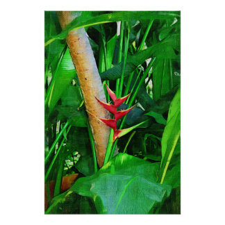 Tropical Heliconia - Walk in the garden Poster