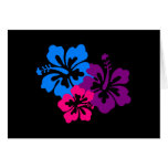 Tropical Hibiscus Flowers in Bright Colours Greeting Cards