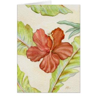Tropical Hibiscus Notecard