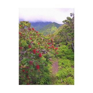 Tropical Hiking Trail Canvas Print