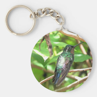 Tropical Hummingbird Picture Key Chains