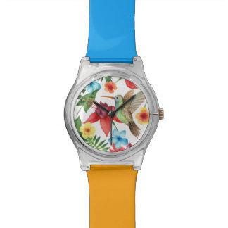 Tropical Hummingbird Watch