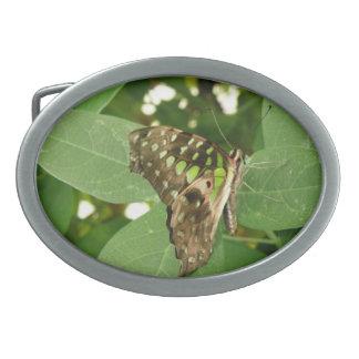 Tropical Iridescent Green Butterfly Belt Buckle