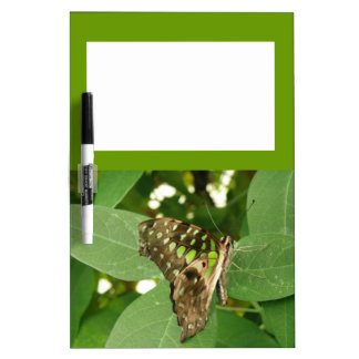Tropical Iridescent Green Butterfly Memo Board