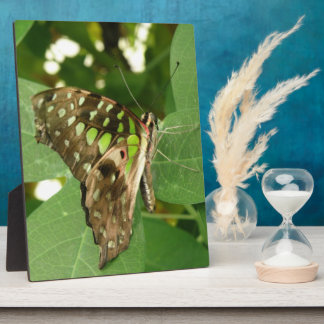 Tropical Iridescent Green Butterfly Plaque