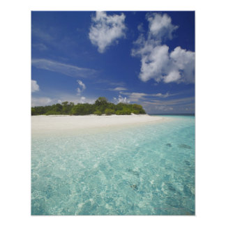 Tropical island surrounded by lagoon, Maldives, Poster