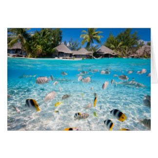 Tropical island under and above water card
