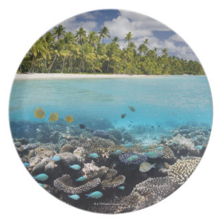 Tropical Lagoon in South Ari Atoll in the Plate