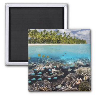 Tropical Lagoon in South Ari Atoll in the Square Magnet