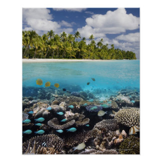 Tropical Lagoon in South Ari Atoll Poster
