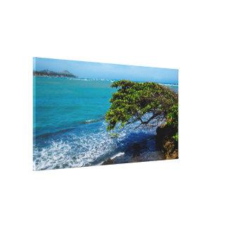 Tropical Landscape   Atlantic Ocean Canvas Print