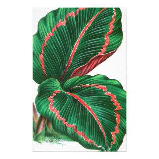 tropical leaf #4 stationery paper