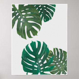 Tropical Leaves Coastal Print