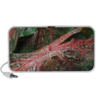 tropical leaves.JPG Travel Speakers