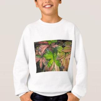 Tropical Leaves Sweatshirt