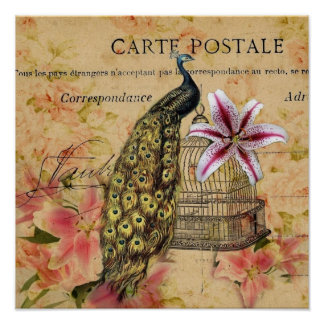 tropical lily flower birdcage vintage peacock poster