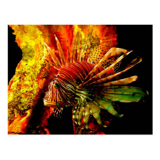 Tropical Lionfish Photo Art Postcard