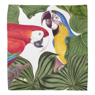 Tropical Macaw Parrot Bird Wildlife Animal Bandana